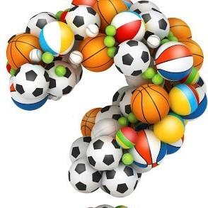 Other Balls & Toys