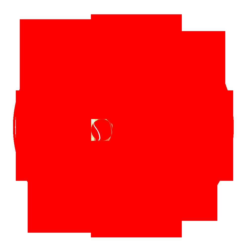 Monaleen GAA Tennis Club